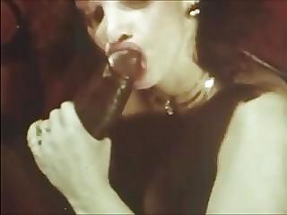 Vintage Porn Compilation Videos